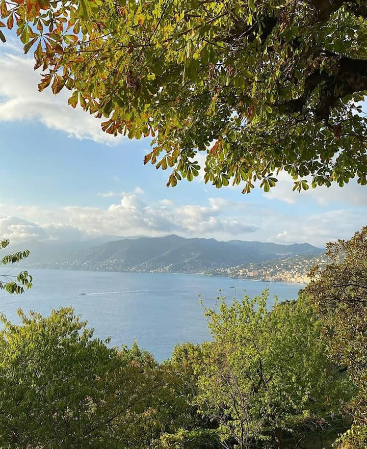The view from the way back to Camogli
