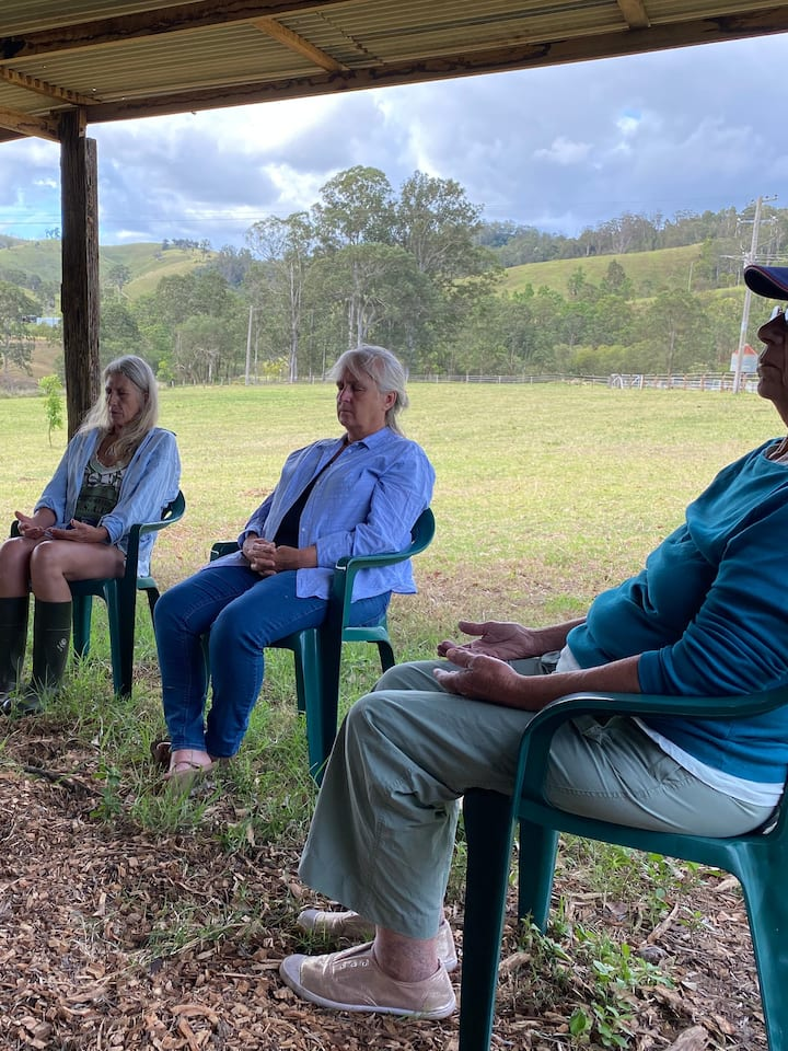 Group meditation with horses