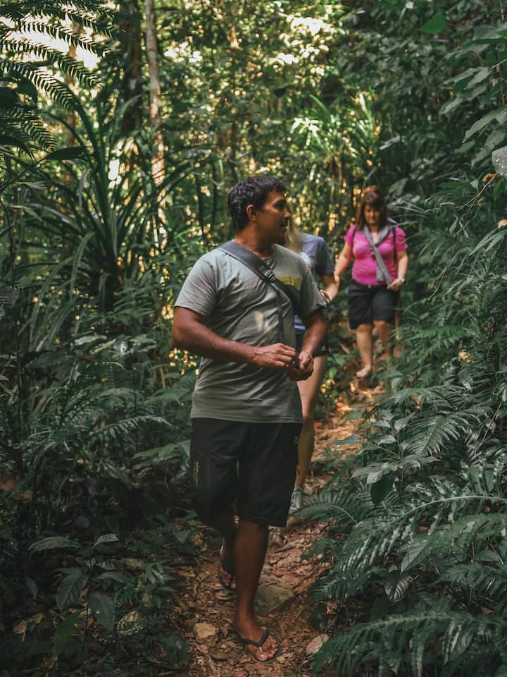 Aboriginal guided day tours
