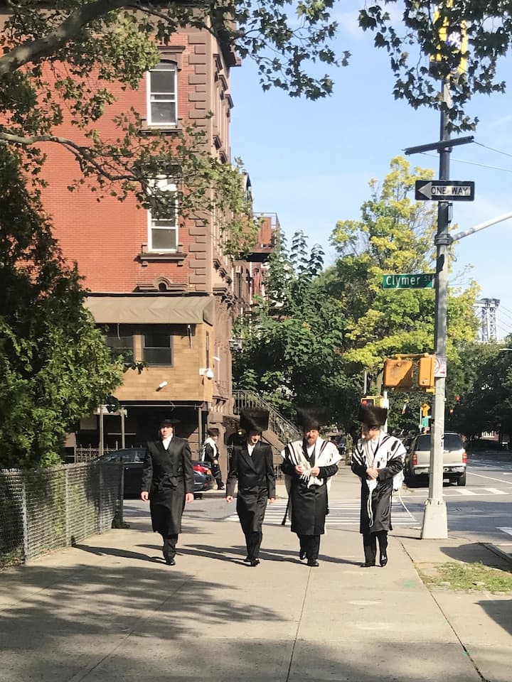 The Hasidic Jewish community