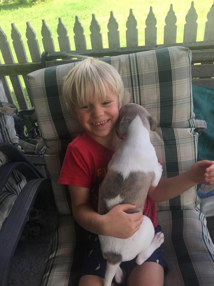 Cuddle a puppy!