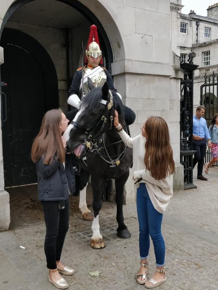 Mounted Horse Guard at Whitehall.