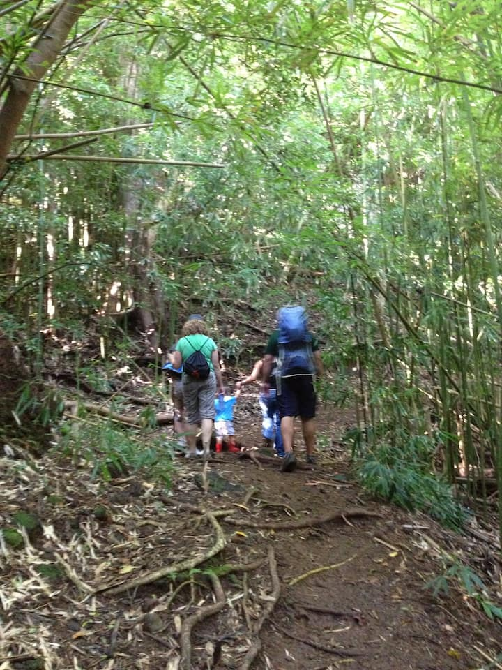 A hiking suitable for all ages