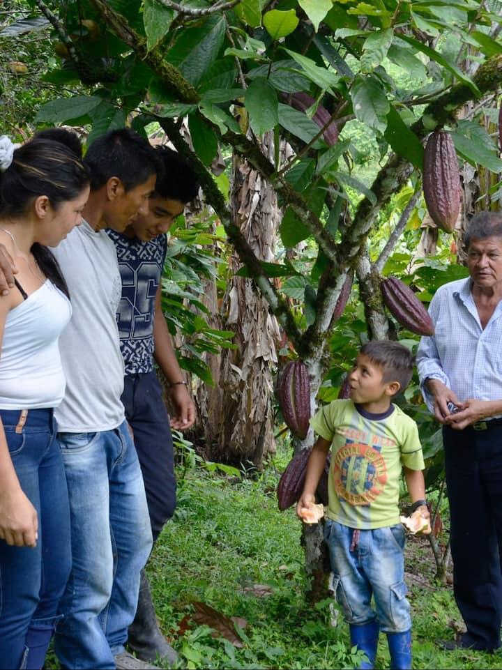 Familias Cacaoteras