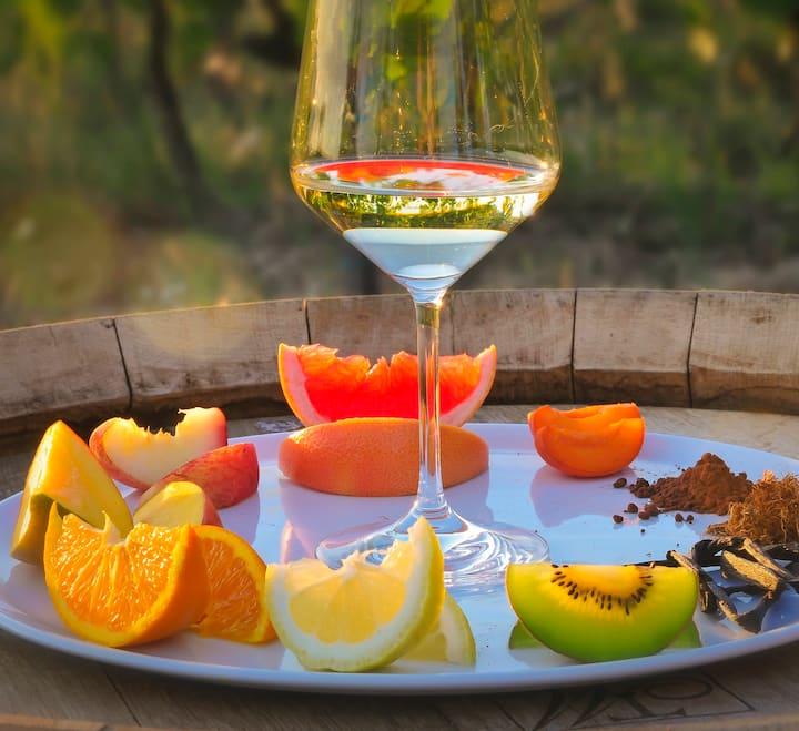 Educational tasting in Siena