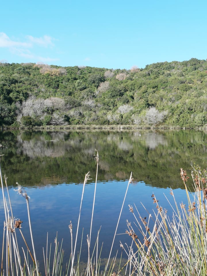 The two wetlands have amazing wildlife