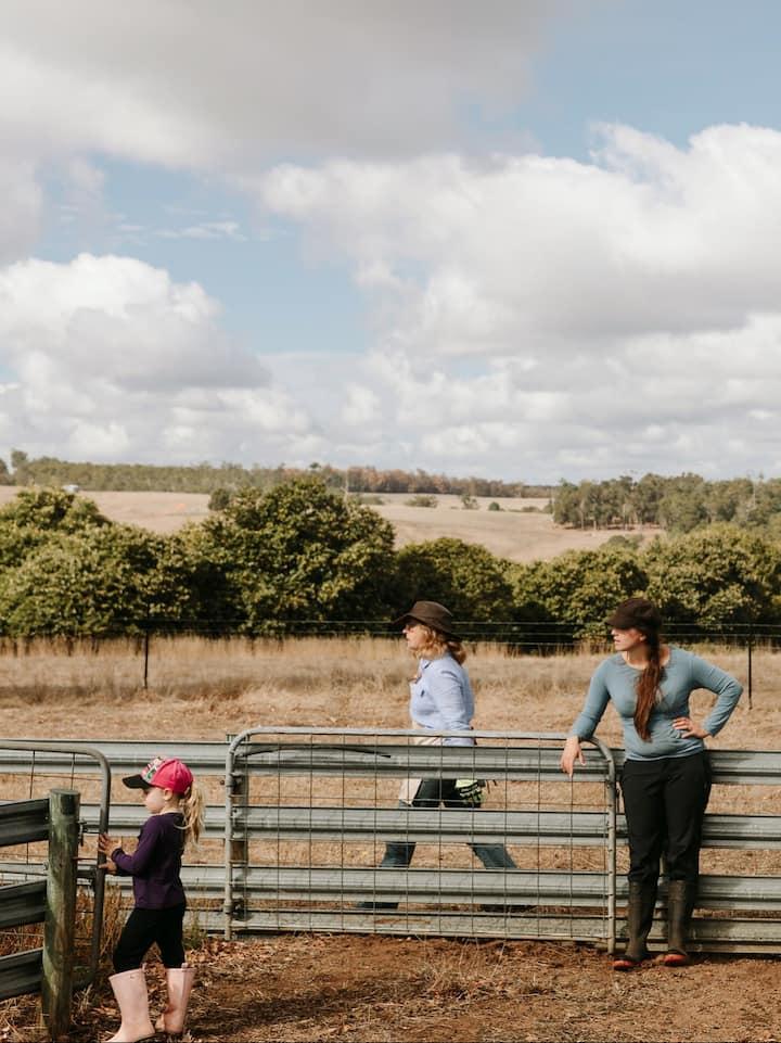 Visitors enjoying the farm
