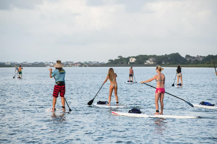 Paddling to look for dolphins!