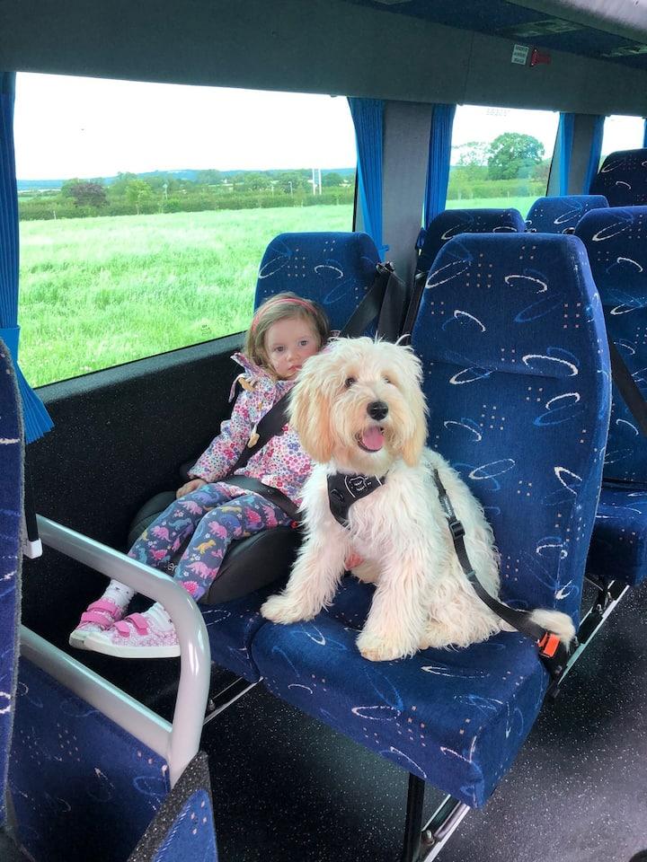 Dog-friendly tours