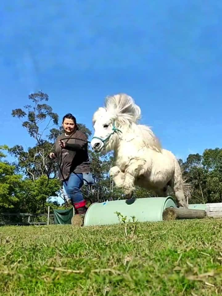 There's so much fun you can have with ponies, we'll show you some fun ideas.