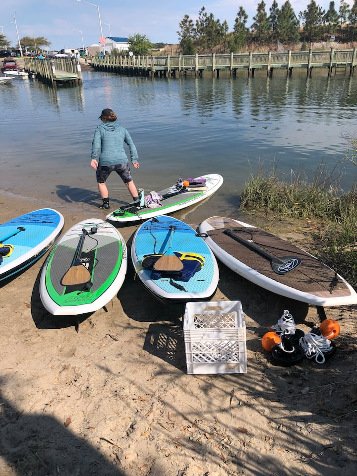 Paddle boards waiting for paddlers