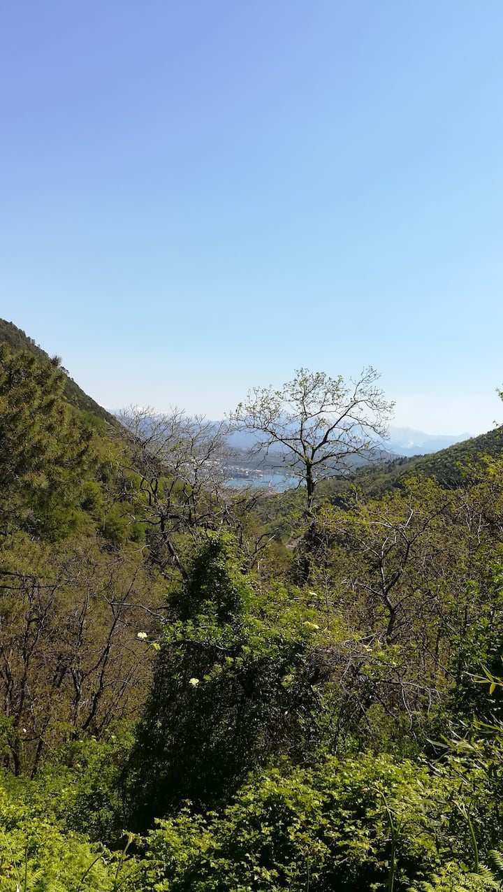 Vista da Biassa