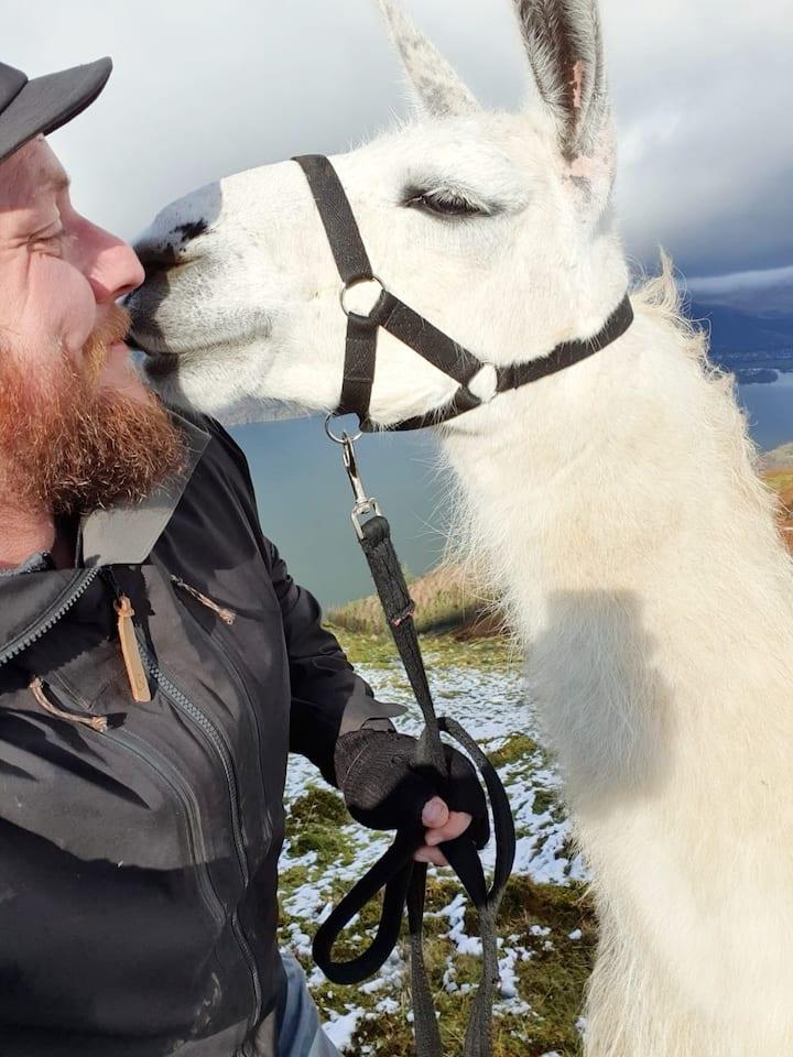 Meet your new trek buddy
