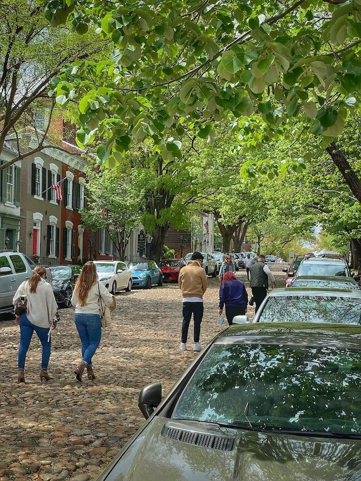 Explore the Historic city streets