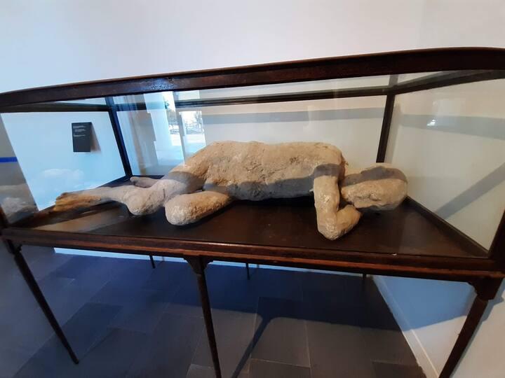 Calco di un abitante pompeiano