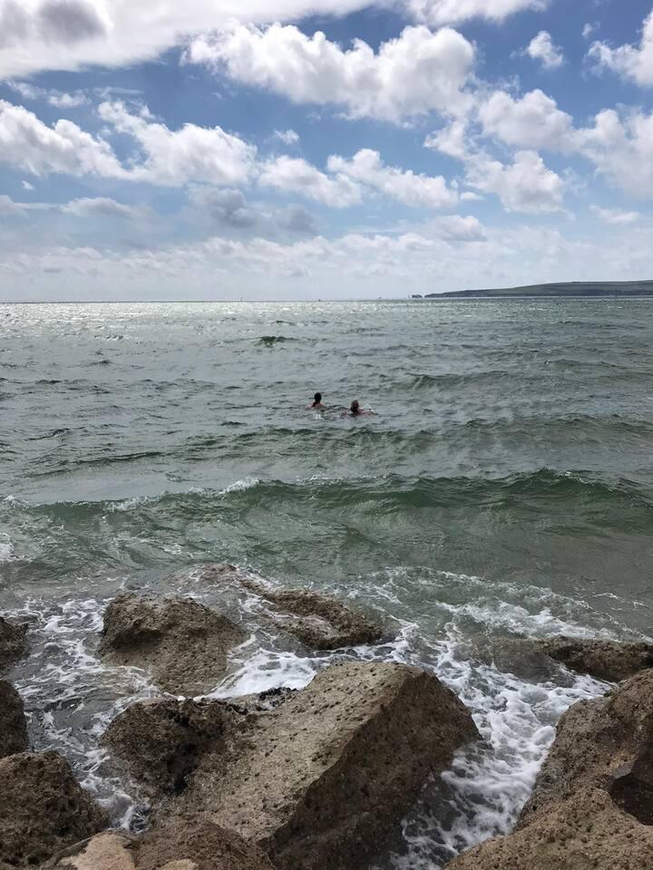 Sandbanks swim