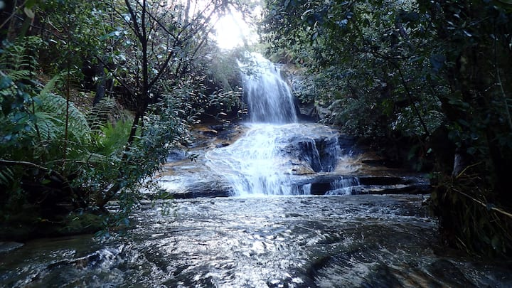 One of the many waterfalls in Hazelbrook