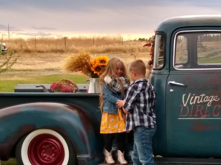 1949 Chevy pickup for Fall Farm Photos