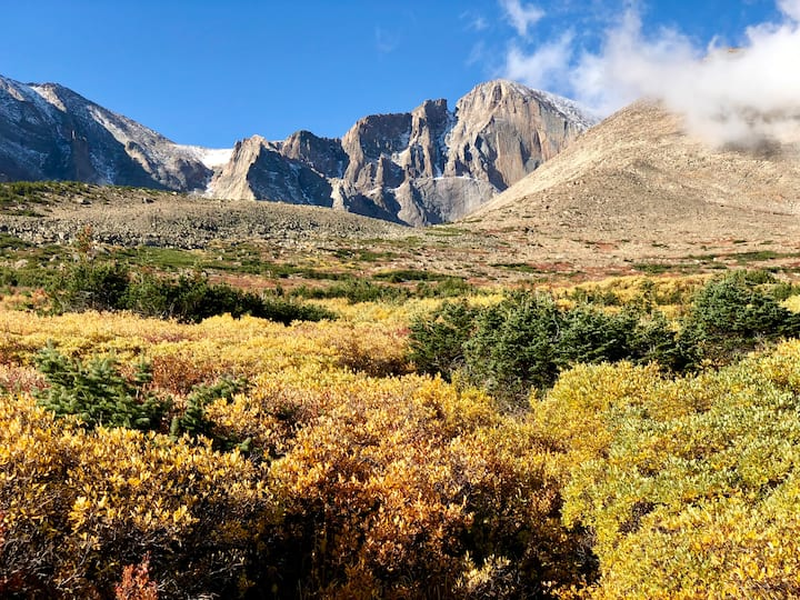 Autumn colors near Battle Mountain