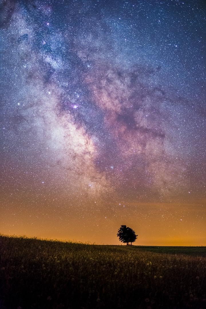 Arbre solitaire sous la Voie Lactée