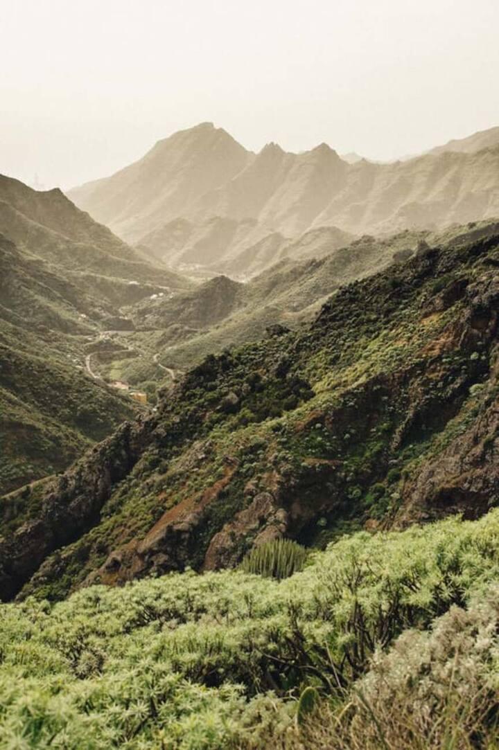 Tenerife y sus barrancos
