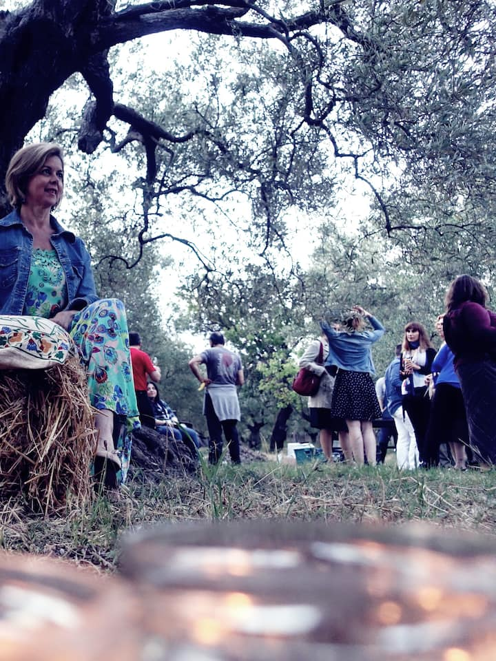 Relaxing times in an ancient olive grove