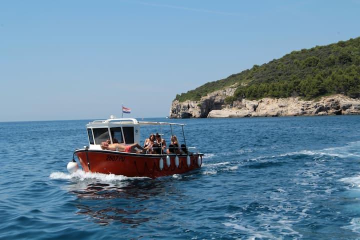 Panoramic cruise