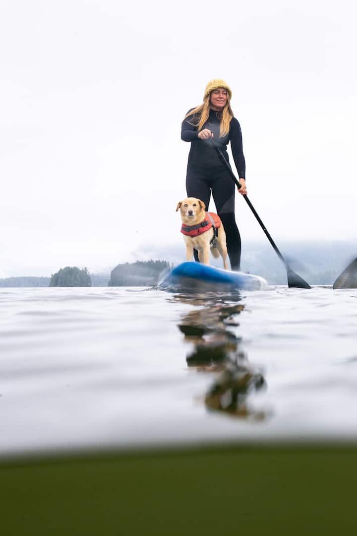 Koli pup loves paddle adventures!