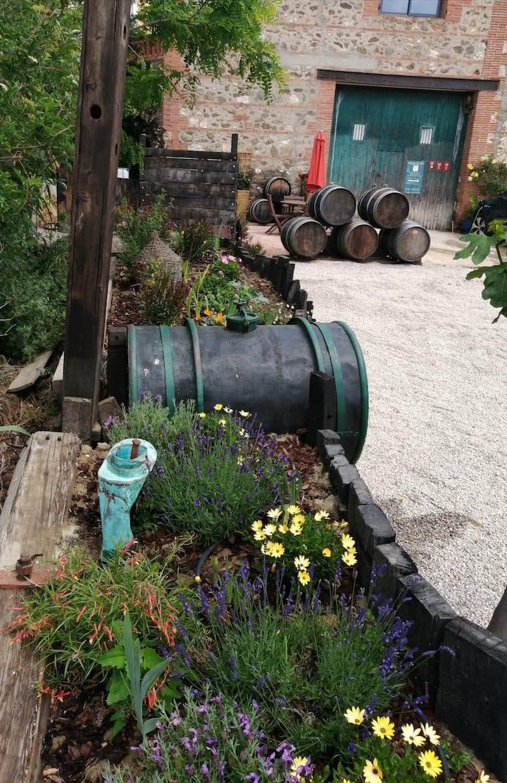 Wine Domaine Garden