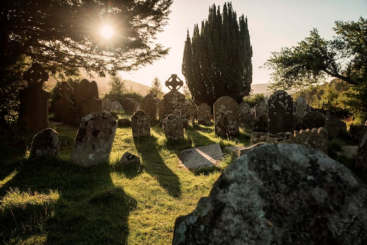 When the light catches the graveyard