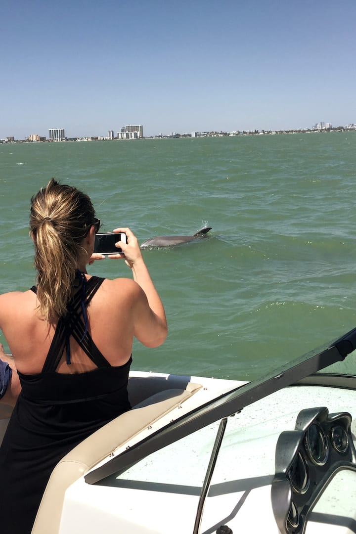 You may spot dolphins