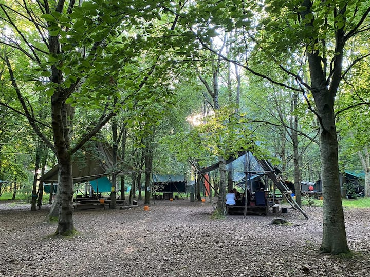 Beautiful and rustic woodland location.