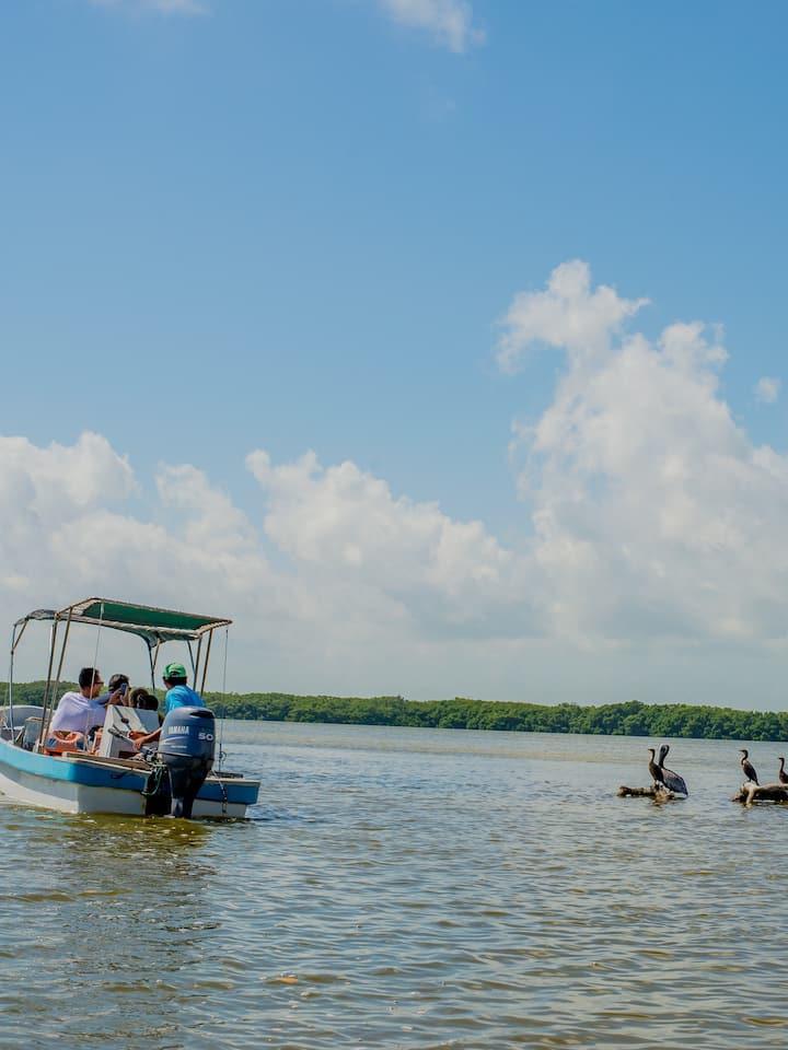 Boat ride Ria Lagartos