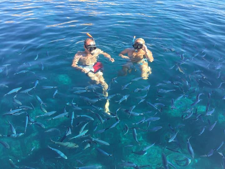 nuota in mezzo ai pesci a thaiti