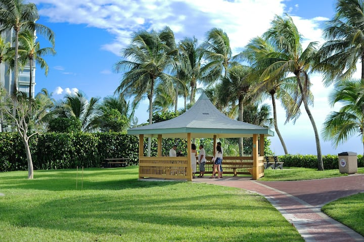Location  at Lowdermilk park, Naples Fl