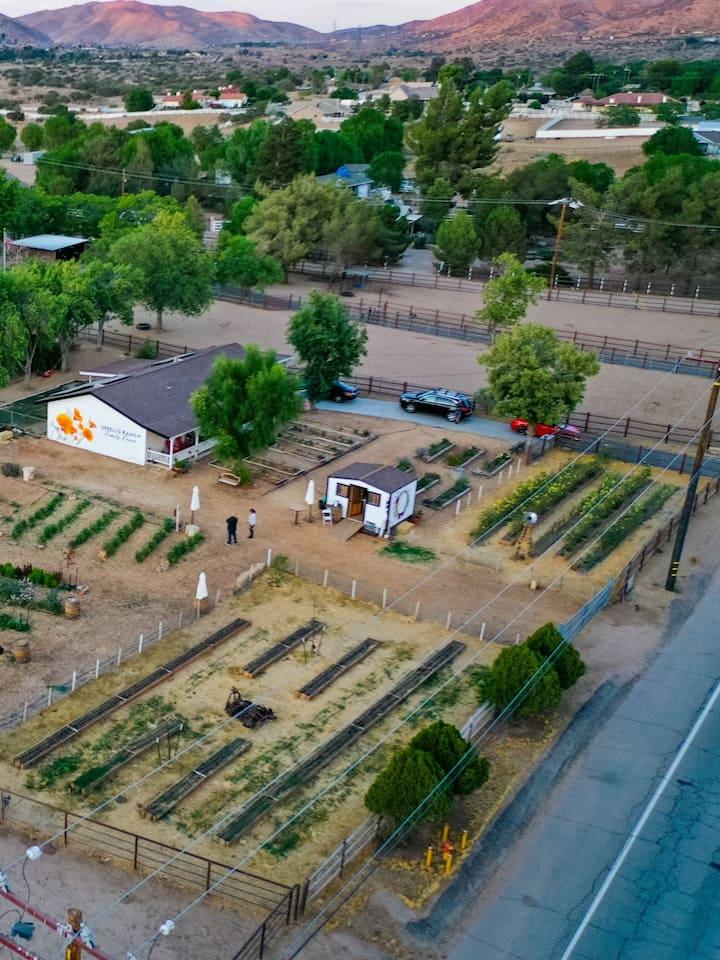 Aerial Shot of our Farm