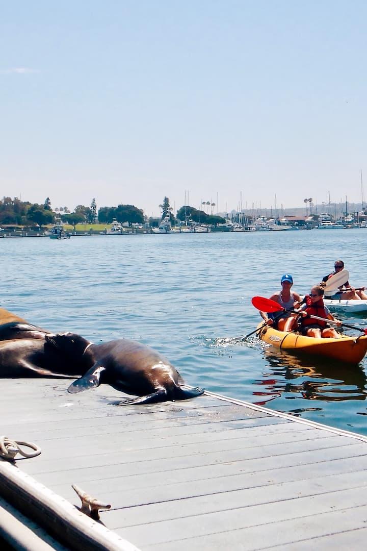 Kayak to see sea lions