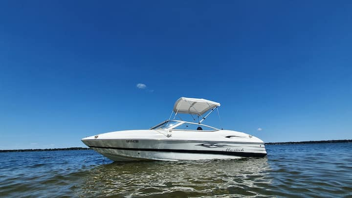 This is the boat you will be riding