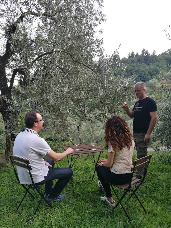 Relaxing among olive trees