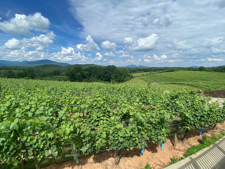 Enjoy views like this at Kaya Winery.