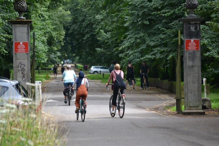 Tree lined cycle ways