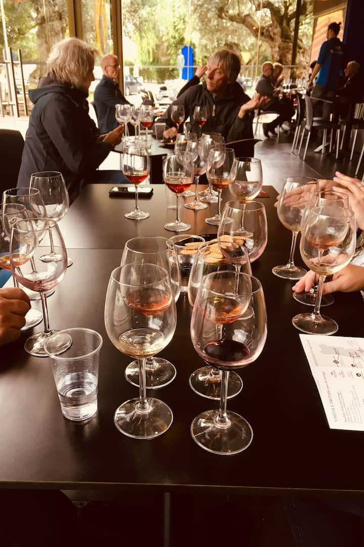 Wine Tasting of Red, White and Moscatel