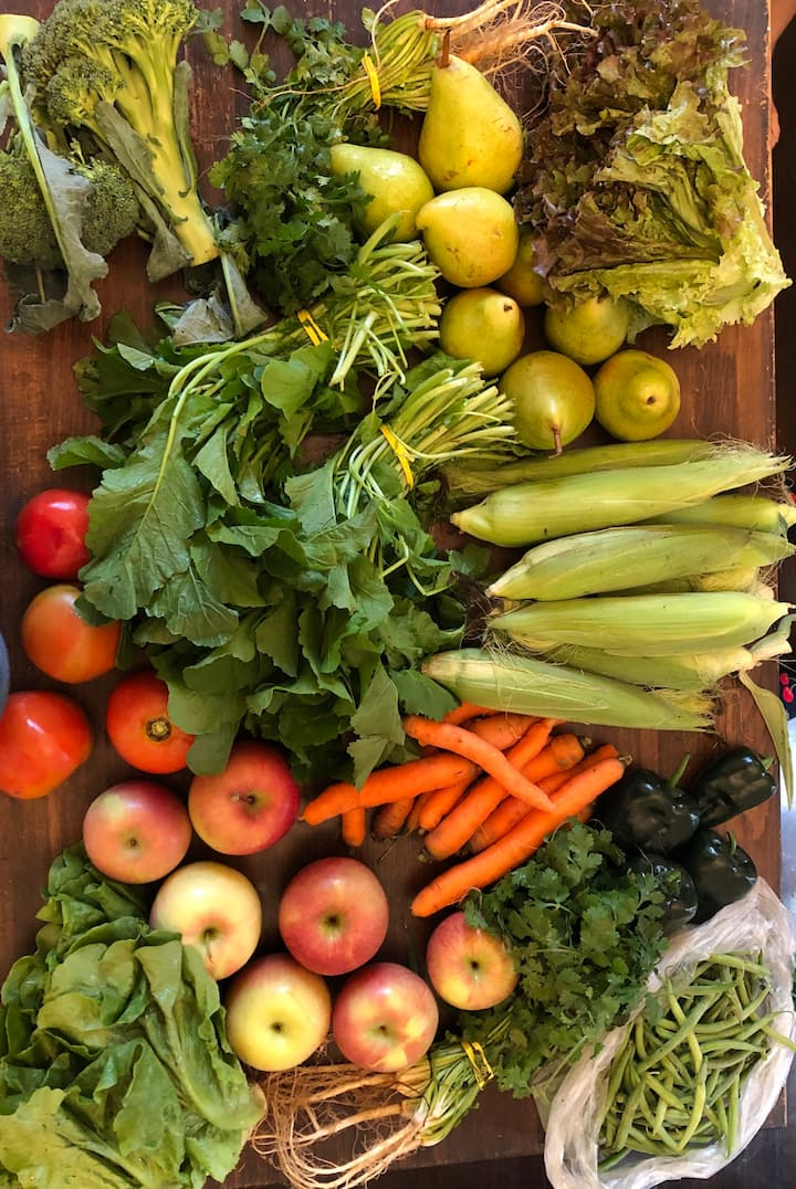 The weekly produce share from our CSA!
