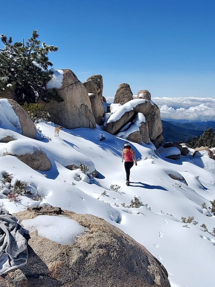 The most amazing views in Big Bear.