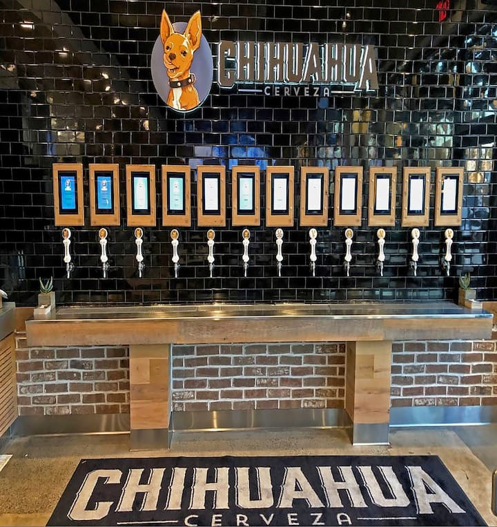 Taproom Chihuahua Cerveza