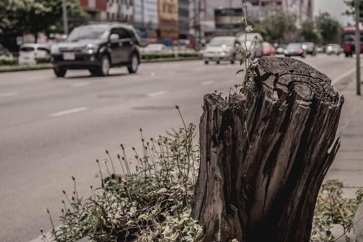 Callecitas de Rosario Norte