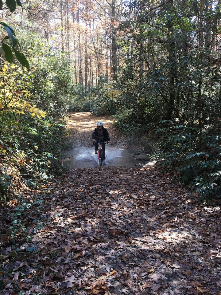 Riding through a creek