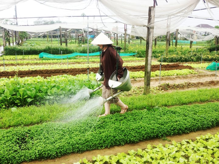 Be a farmer at farm : Watering the crops