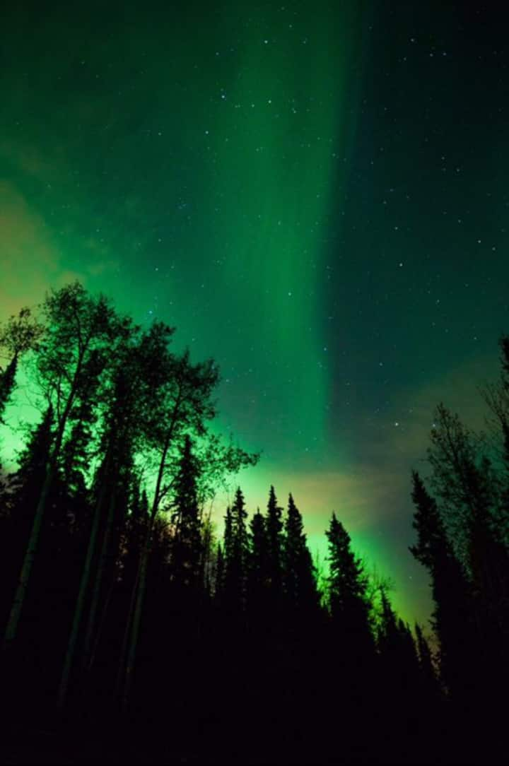 Aurora viewed on the property