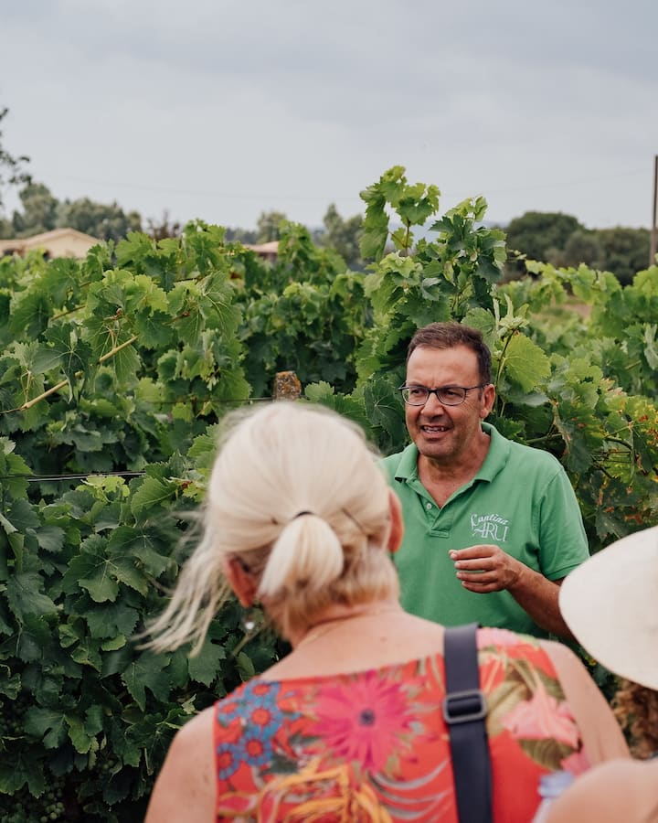 Explaining the secrets of winemaking